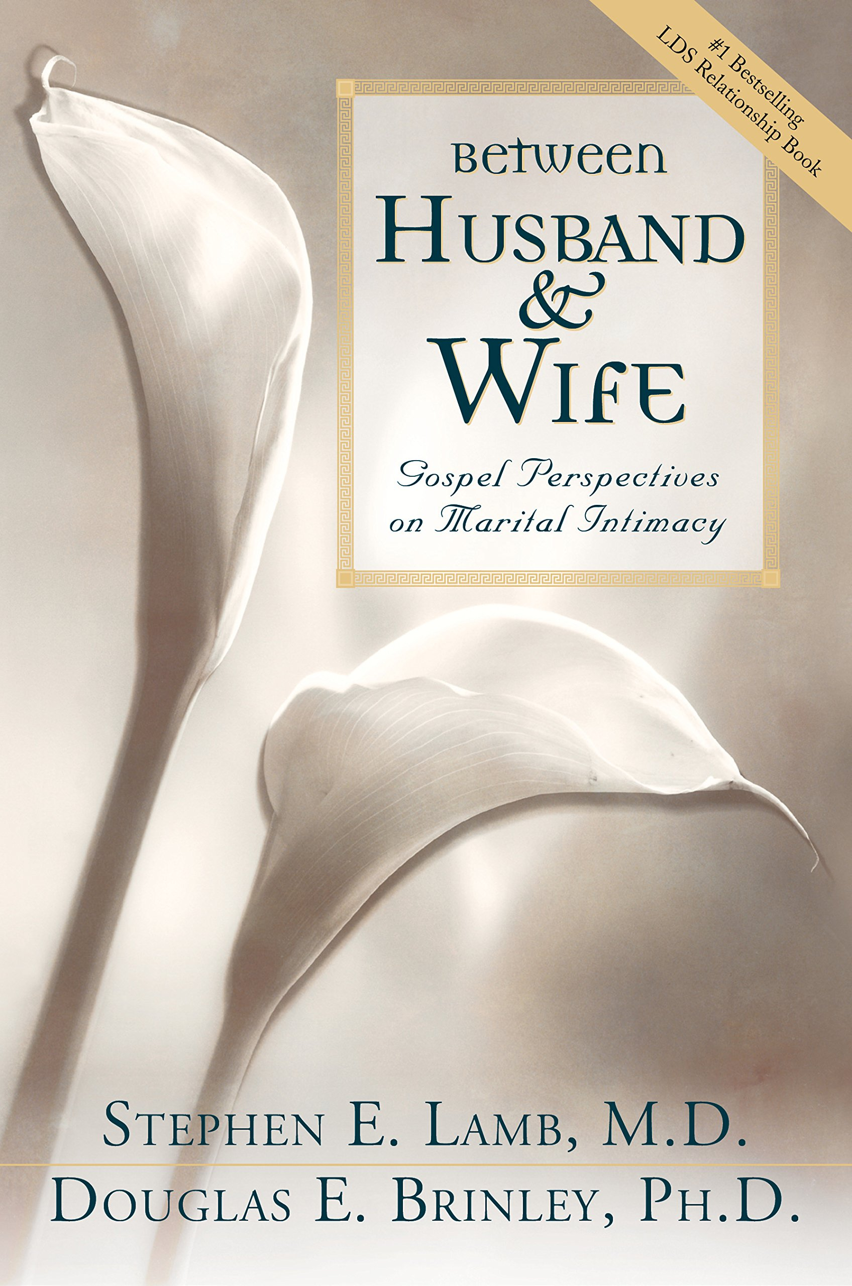 BETWEEN HUSBAND AND WIFE -  Gospel Perspectives on Marital Intimacy, Lamb, Stephen E. And Brinley, Douglas E.