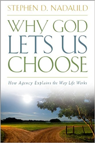 Why God Lets Us Choose - How Agency Explains the Way Life Works, Nadauld, Stephen D.
