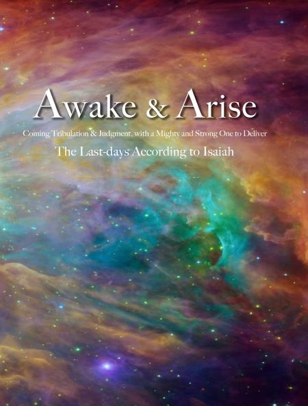 Awake and Arise -  Coming Tribulation and Judgement, With a Mighty and Strong One to Deliver. The Last-days According to Isaiah., Brinkerhoff, Val