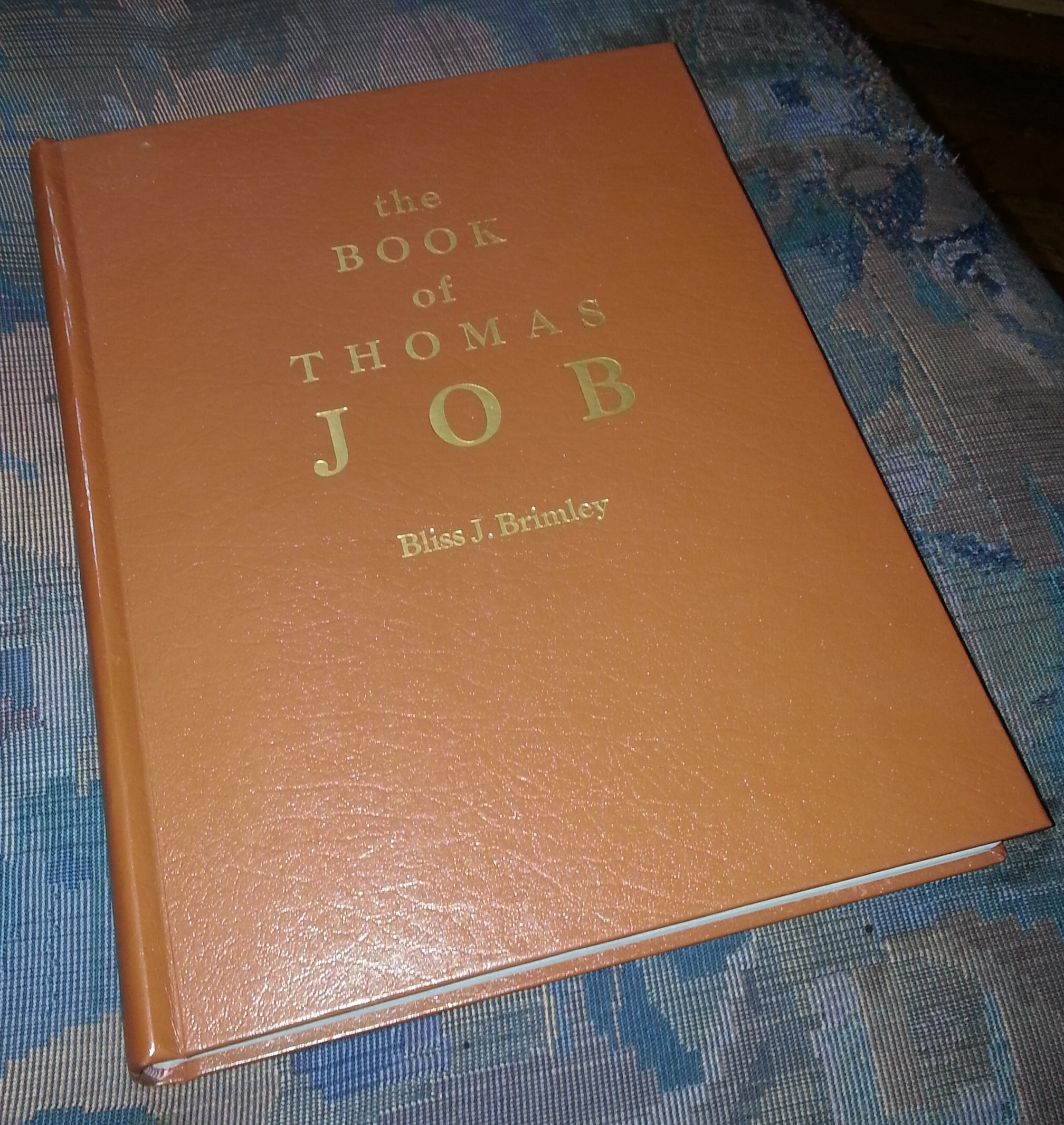 The Book of Thomas Job, Brimley, Bliss J.
