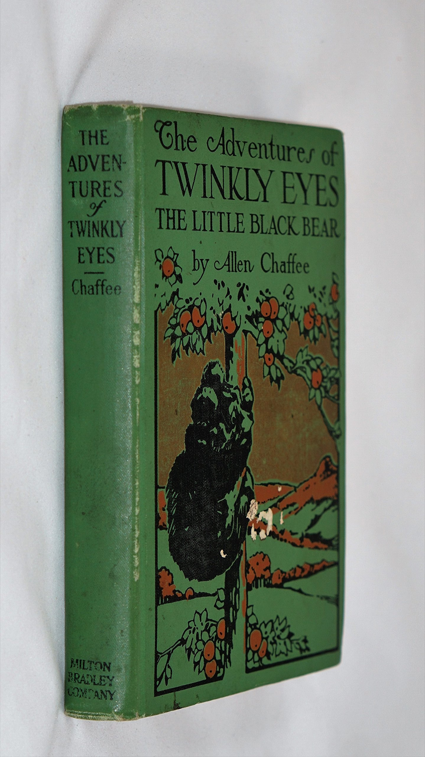 Image for The Adventures of Twinkly Eyes, the Little Black Bear